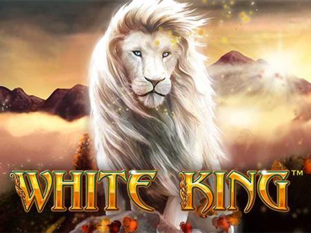 lion king slott